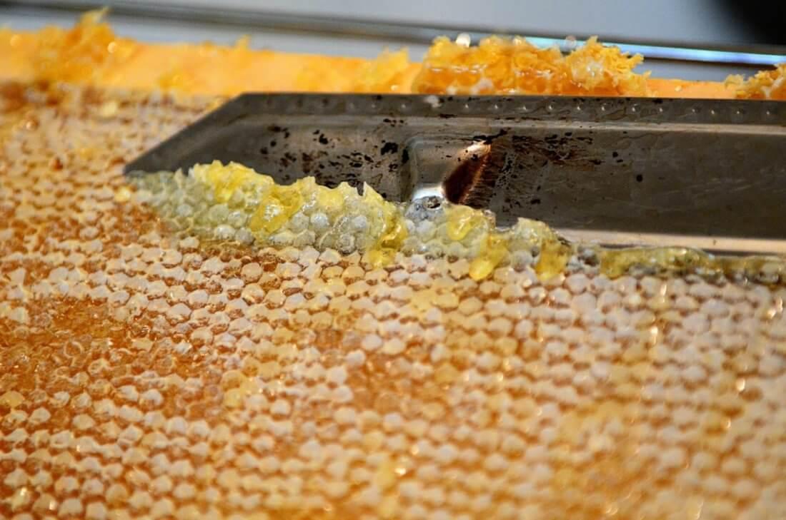 Забрус пчелиный: что из себя представляет такой продукт, каковы лечебные свойства, как правильно применять это средство?