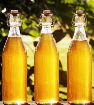 Классический рецепт самогона из меда и дрожжей: как приготовить брагу в домашних условиях?