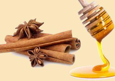 Рецепты корицы с медом для похудения: как правильно приготовить и пить, какой результат можно получить?
